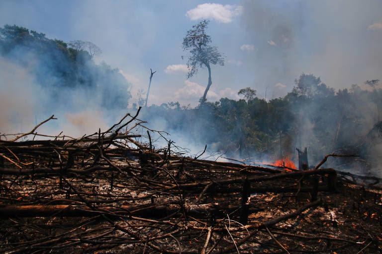 Focos de queimada na região metropolitana de Manaus; na amazônia, a prática, comum nesta época do ano, tem castigado a vegetação